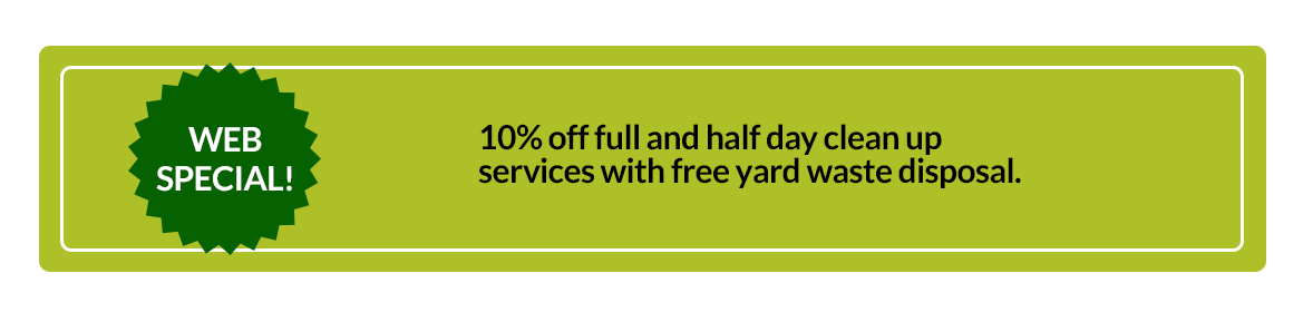Web Special gives 10% discount on Landscaping Services